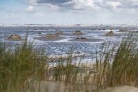 Beach of the frisian island of Terschelling