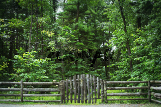 Log fence with sign near forest
