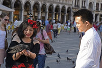 Tourists feed pigeons