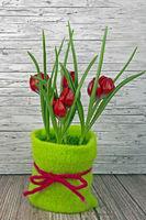 Frühling rote Tulpen auf Holz