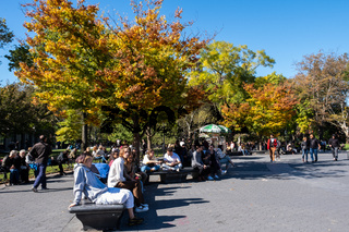Fall foliage color of Washington Square Park near NYU in Lower Manhattan