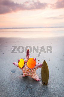 Starfish surfer on beach