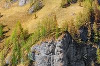 Mountainside of Bucegi