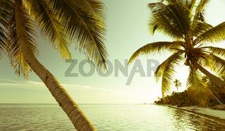 Vintage Tropical Beach Scene