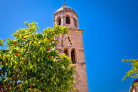 Cavtat church tower and tangerine tree view