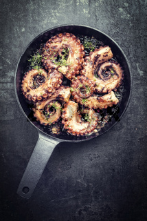 Traditional Spanish octopus braised cooked with tomatoes and herbs in wine sauce as closeup in a cast-iron saucepan copy space - vintage