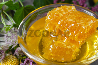 Honeycombs and floral honey on a dark gray background. Background image.