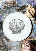 Photo with seashell