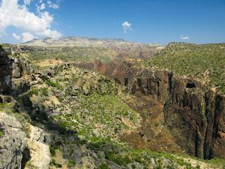 Panorama view to plateau Dixam and gorge Wadi Dirhur, Socotra island, Yemen