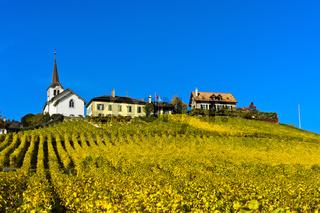 Winzerdorf Féchy-Dessus mit Kirche im Weinbaugebiet La Côte, Waadt, Schweiz