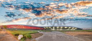 Panoramic view of Abu Dhabi Sports Racing Stadium at sunset, UAE