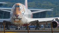 Rossiya Boeing Tigers Livery