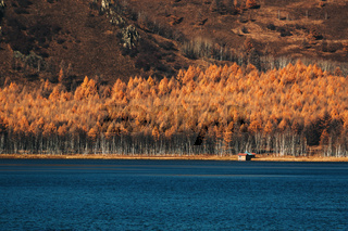 Autumn Colors Forest Woods Yellow Orange Reflecting on Blue Water Lake Landscape Natural Clear Weather Beautiful