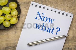 Now what? A question in sketchboook.