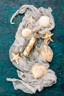 Seashells on dark turquoise background