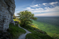 Path along the limestone cliffs above the crystal clear water of the west coast of Gotland, Sweden