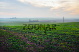 Evening rural landscape