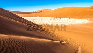 Red sand dunes in Deadvlei, Sossusvlei, Namib-Naukluft National Park, Namibia