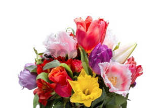 A bunch of colorful tulip flowers isolated on white background
