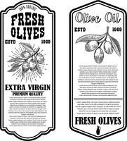 Set of olive oil flyer templates. Design element for logo