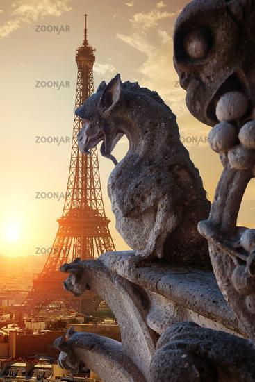 Chimeras in Paris