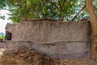 Village clay rocked brown wall with exotic plants on roof