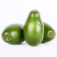 Avocado, isolated, vegetarian, detox, mediterranean, diet, antioxidants, Spain, omega, nutrition, balanced