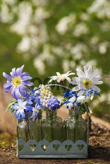 Spring blossoms in little bottles