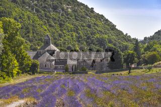 Abtei Notre-Dame de Senanque mit Lavendelfeld