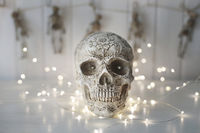 Scary skull with lights in background