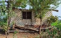 Abandoned white stones bricks rocked hut with single iron rusted window and tropical green trees
