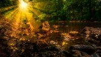 Sonnenschein an einem Bachlauf