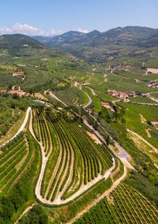 Luftaufnahme der Weinberge um Illasi in der Provinz Verona, Venetien, Italien