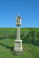 D-_Bayern--fränkisches Weinland bei Volkach.jpg