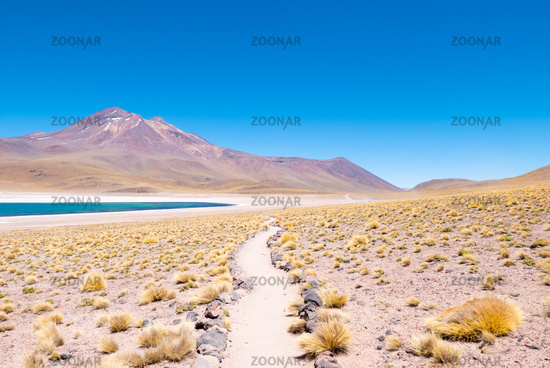 Chile Atacama desert Miscanti Lagoon pathway
