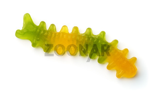 Top view of sweet jelly worm