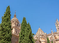 Ornate carvings on roof of the Old Cathedral in Salamanca