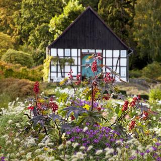 BI_Botanischer Garten_06.tif