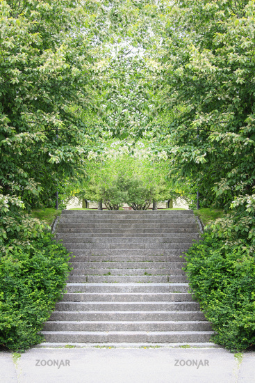 Symmetry with Stairs and Green Shrub