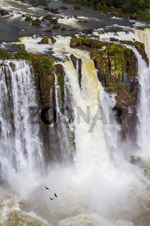 The fantastic roaring Iguazu Falls.