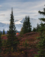 Camping in Denali National park, facing Mt Mckinley