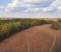 Aerial view of autumn meadow and forest