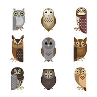 Vector owl characters set showing different species.