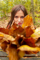 Gorgeous young woman outdoors, in a park autumn scenery, holding yellow leaves and looking focused through them at the camera. Close-up shot in natural light, retouched, vibrant colors