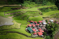 An isolated village on the Batad rice terraces