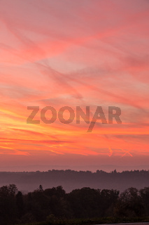 Burning red sky with a black forest with fog and shadows