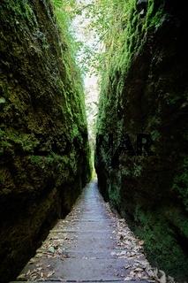 Wanderweg durch die Drachenschlucht bei Eisenach