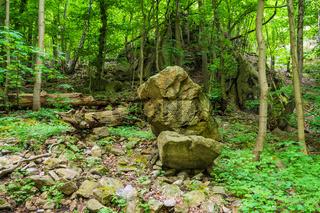 Landschaft im Bodetal im Harz