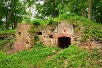 Burg Anhalt im Harz
