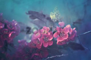 pink pastel blossoms in turquoise under water ambience
